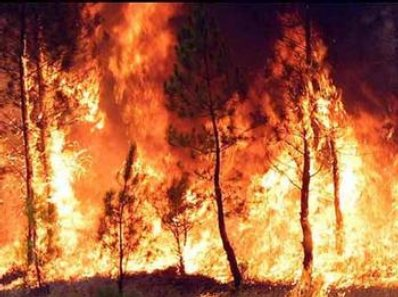 20090728104350-incendio1.jpg