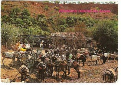 20090713124546-burros-taxi-en-el-algar-1-.-decada-de-los-60.jpg