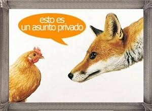 20100212111400-20090622160520-zorro-22.jpg