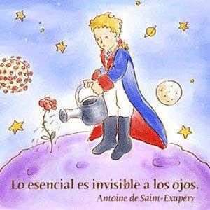 20120216103308-principito-lo-esencial-es.jpg